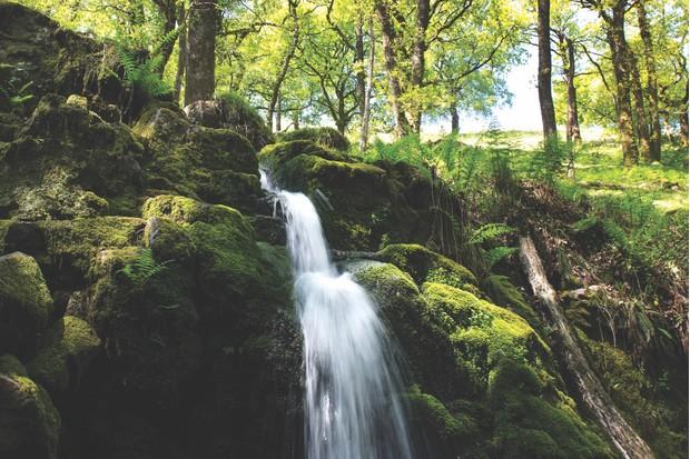 Venford Brook waterfall. Dartmoor, Devon, England