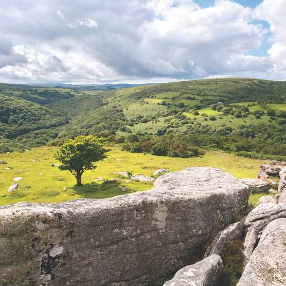 View from Bench Tor, Dartmoor