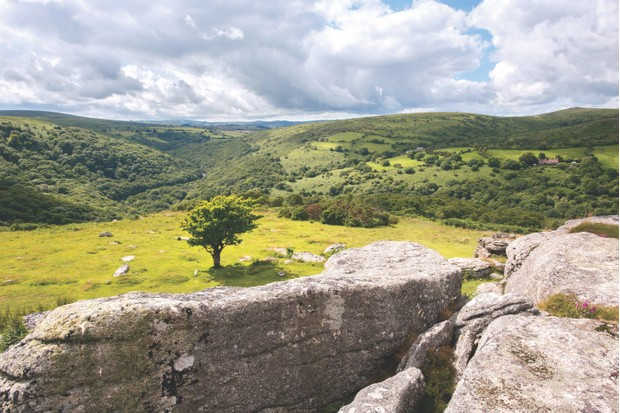 View from Bench Tor, Dartmoor ©Alamy
