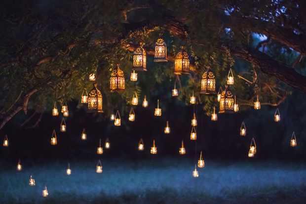 fairy lanterns in the garden