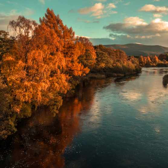 Autumn colours on The River Spey, Aviemore, Cairngorms National Park