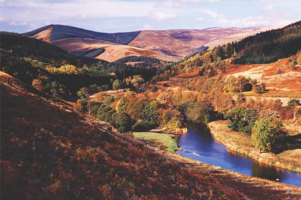 Elibank and Traquair Forest, Scottish Borders