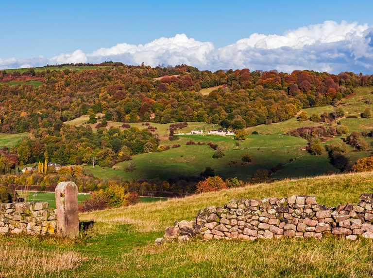 John Craven: The worrying surge in rural crime