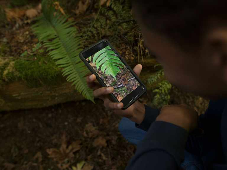 Matt Baker: How technology can help to engage children with nature