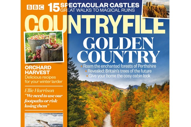 Issue 157: Spectacular autumn walks and ruins