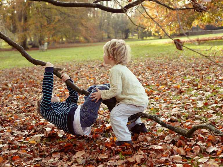 Children benefit from daily interaction with nature, finds study