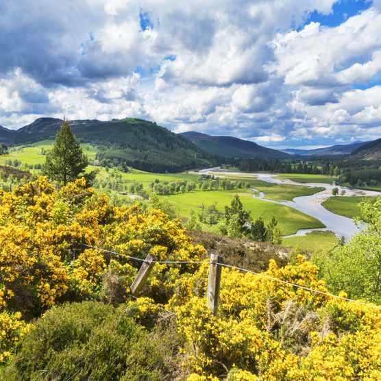 River Dee at Braemar, Aberdeenshire, Cairngorms National Park, Scotland.