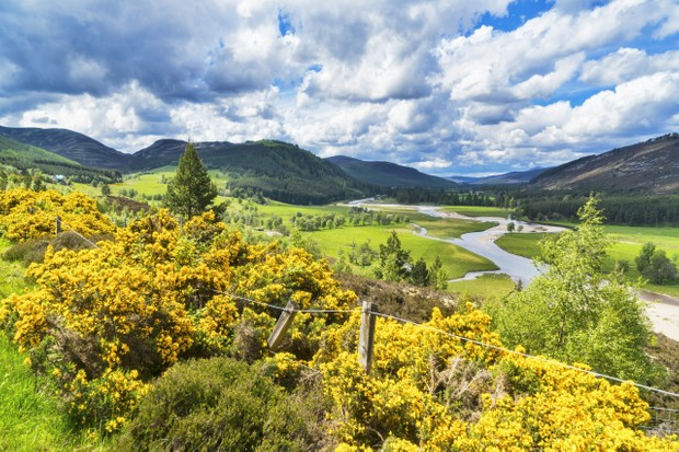 River Dee at Braemar, Aberdeenshire, Cairngorms National Park, Scotland.