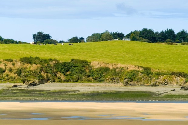 View from the Camel Trail cycleway and footpath across the River Camel, Cornwall