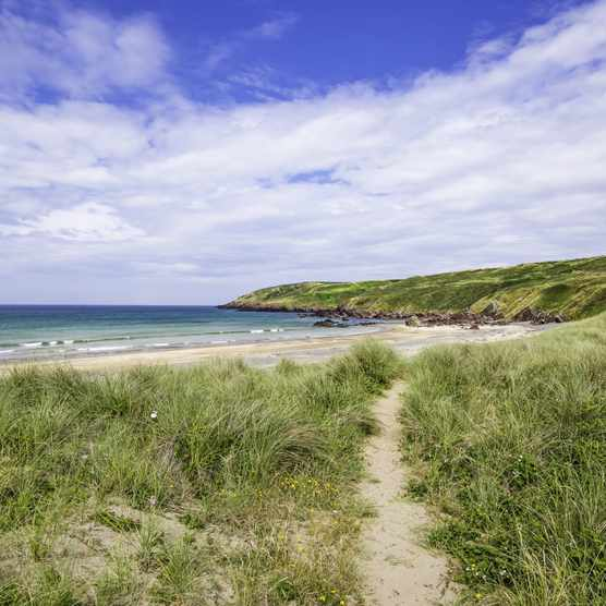 Freshwater West Beach Pembrokeshire