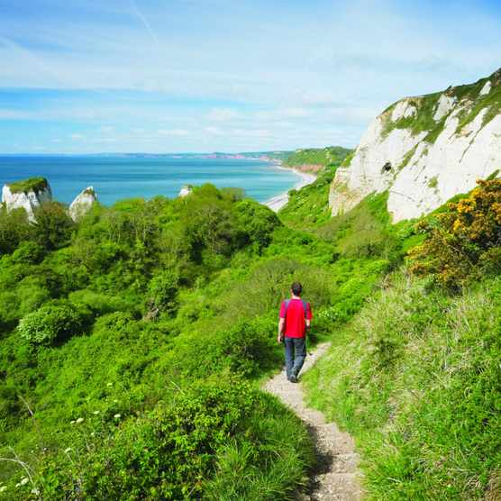 South West Coast Path at Hooken Cliff heading towards Branscombe, Devon