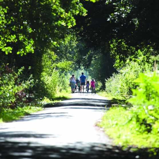 Family cycling North Devon's Tarka Trail near Fremington Quay