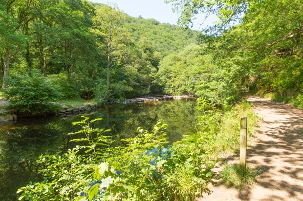 River Teign and Fingle Woods in Dartmoor National Park, Devon