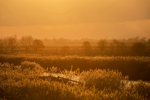 Sunset at RSPB Ouse Washes Nature Reserve, Cambridgeshire, February 2019