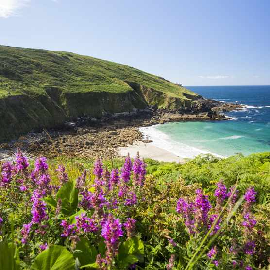 Cornish coastal scenery at Porthmeor Cove near Zennor, UK