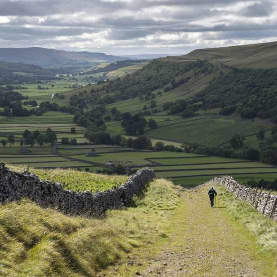 Man hiking in the Yorkshire Dales national park, England ©Getty
