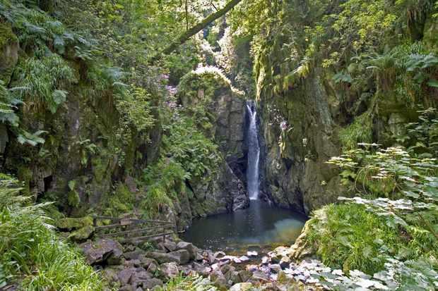 Walk: Stanley Ghyll Force, Cumbria