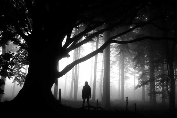 New nature podcast – listen to folktales and old stories on a Halloween walk in Dorset