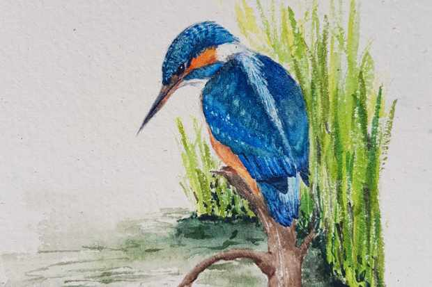 Spend a blissful, calming day by the river with a Somerset artist in the BBC Countryfile Magazine podcast