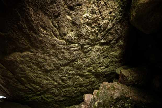 Earliest known animal carvings in Scotland discovered