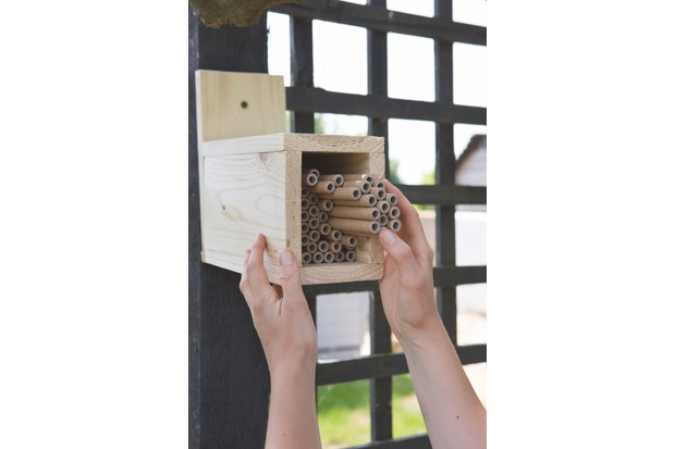 Putting up the bee hotel. © Sarah Cuttle