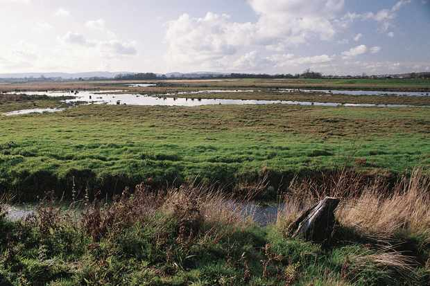 Flooded fields and ditches at Pulborough Brooks reserve. © Andy Hay/RSPB