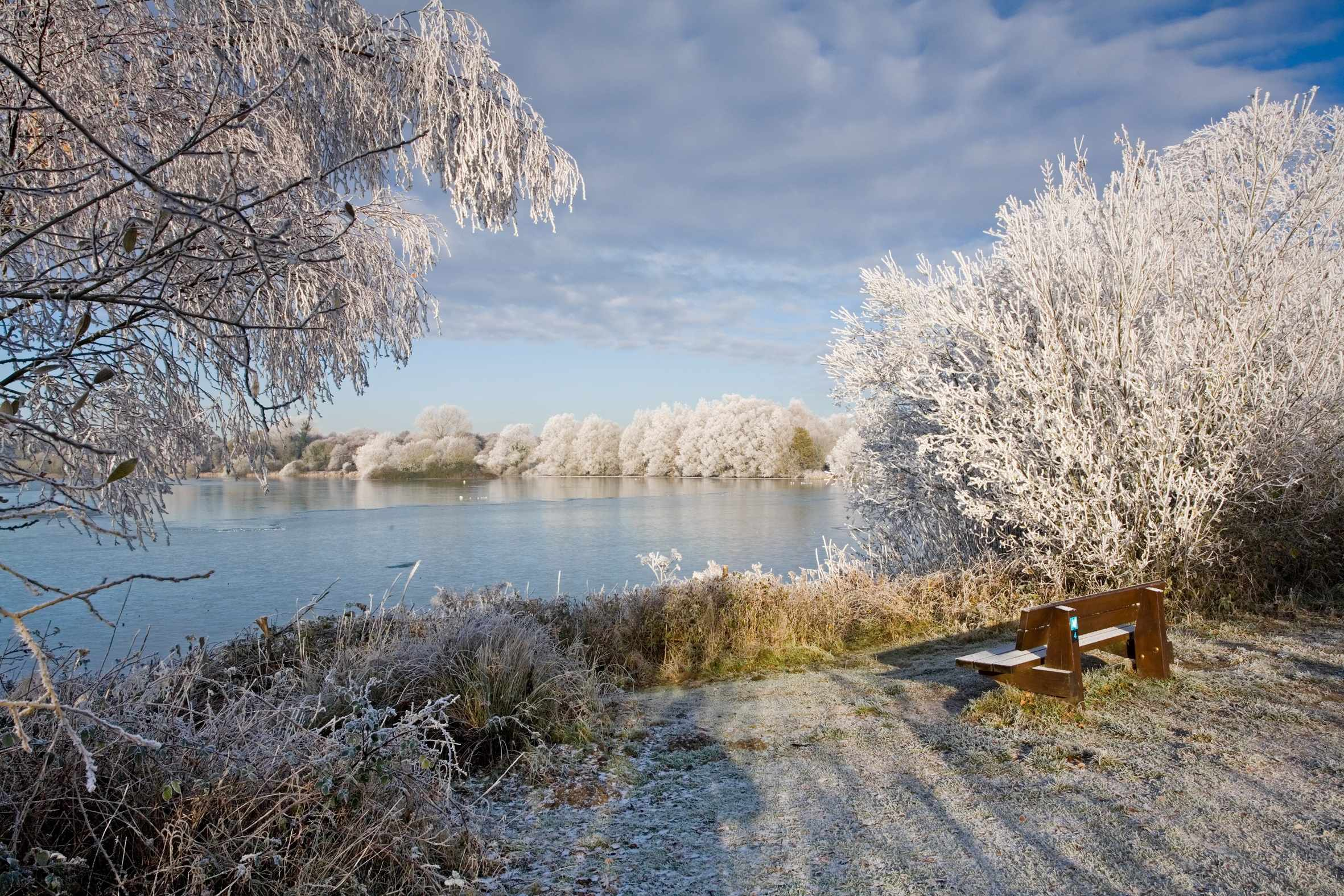 Lackford Lake in the frost.