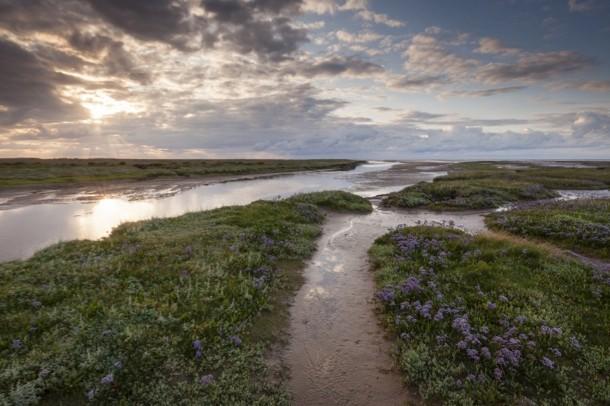 Stiffkey Marshes at Blakeney. © National Trust