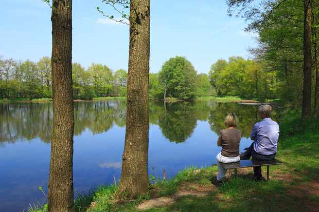 Benches can make natural areas more accessible for many people © Werner OTTO / ullstein bild / Getty