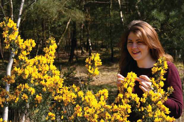Tiffany Francis with gorse bush