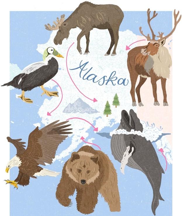 Alaska_623-1f7472a