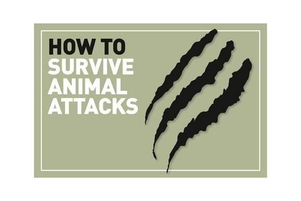 Animal-attacks_logo_0-3661877