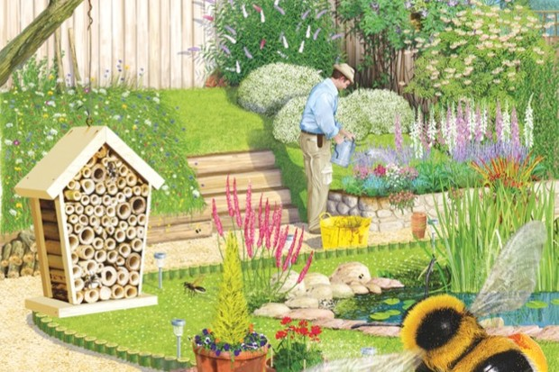 How To Make A Bee Friendly Garden Discover Wildlife