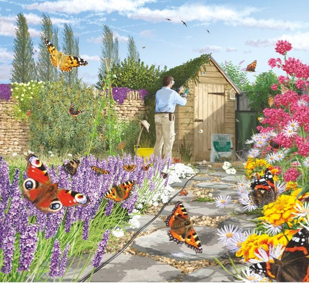 Beau How To Make A Butterfly Friendly Garden
