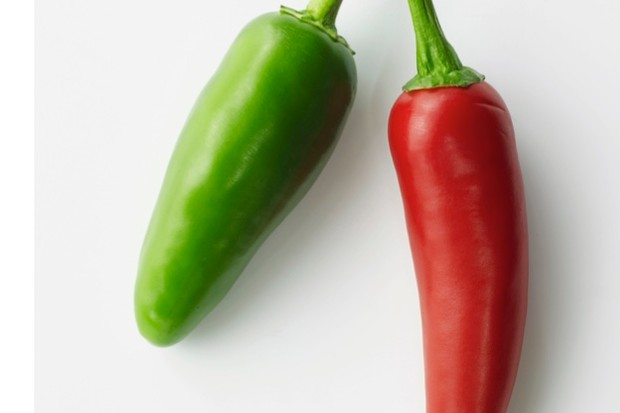 Red and green chillies on white background