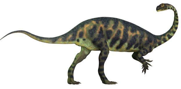 More is being discovered about sauropods thanks to findings such as the recent Scottish ones. © CoreyFord/iStock
