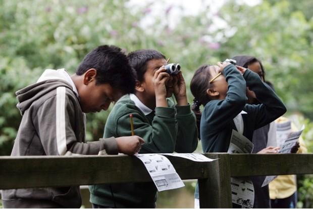 Children doing Big Schools Birdwatch at school