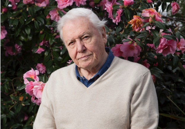 DavidAttenborough_March-08-2016_00326_623_Tom-Gilks_BBC-Wildlife-b6e7d56