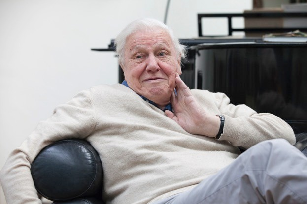 DavidAttenborough_March-08_2016_00189_623-397e398