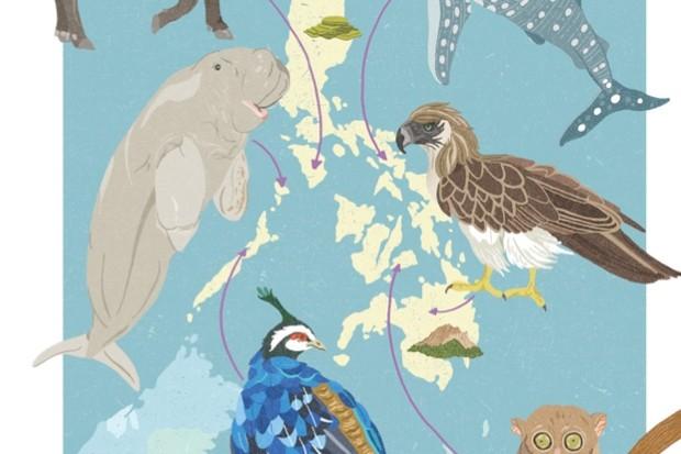 DawnC_BBCWildlifeMagazine_Philippines_Colour1_FlattenedCMYK_623-61348f5