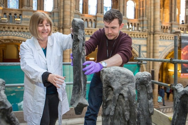 The Dippy exhibit is inspected by museum staff. © Trustees of the Natural History Museum
