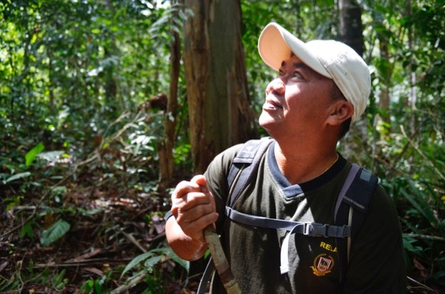 Iban guide Bayang anak Penguang (of Borneo Adventure) knows the orangutans and the jungle trails of Batang Ai intimately.