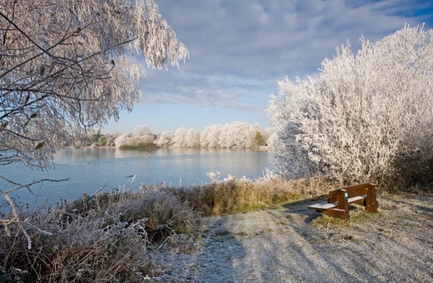 Lackford Lakes in the frost © Steve Aylward
