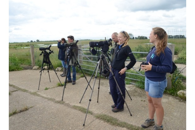 Project20Godwit20team20watching20the20release2028c2920Bob20Ellis20WWT_623-dfaa868