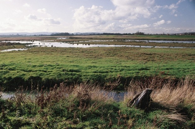 Pulborough Brooks RSPB reserve, flooded fields and ditches November 1993