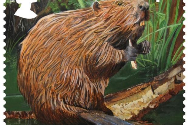 RS-Eurasian-Beaver-Stamp_623-a6e5d96