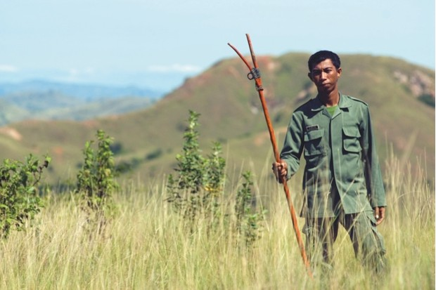 All over Africa rangers, in far less risky situations, are forbidden from leaving camp without high-calibre rifles yet it seems that these sticks are ? in conjunction with a stout pair of legs for running ? the only line of defence against dragon attacks for Komodo National Park rangers.