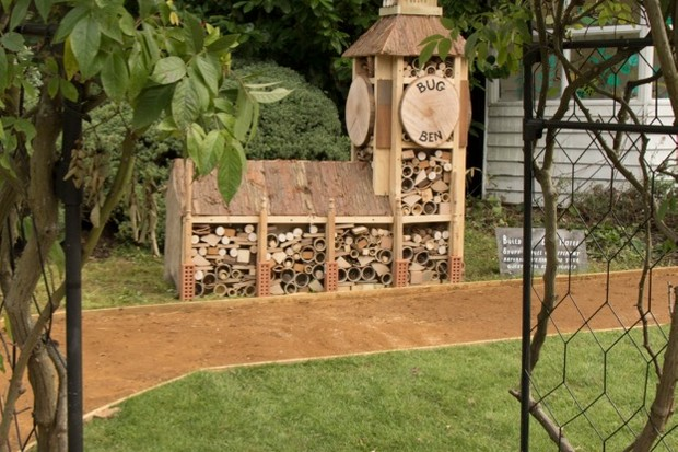 WIldlife-Garden-Bug-Hotel-c-ZSL-London-Zoo_623-a1ccc92