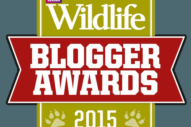 WL_Blogger_of_Year_logo_623px-1ae27f4