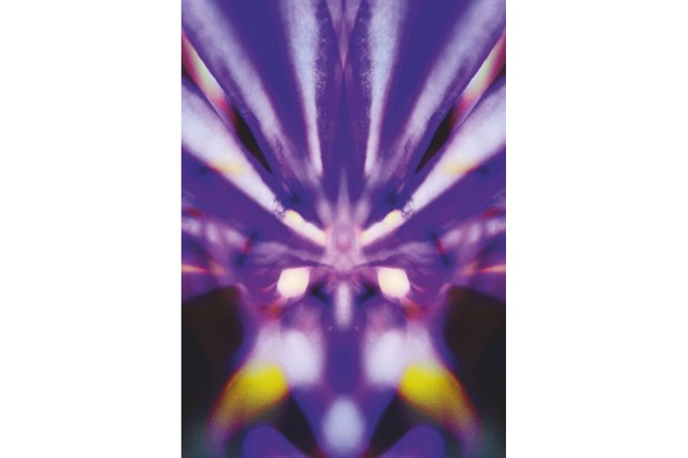 Wildlife_FLOWER20MACRO_CMYK-6b53e59